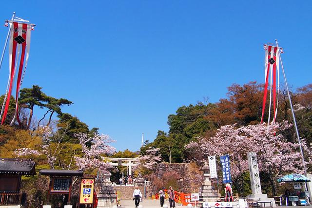 110413_132247_甲府市_武田神社