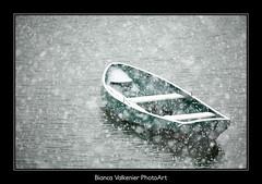 BVF171210-2531 (Bianca Valkenier PhotoArt) Tags: winter sneeuw nederland natuur winters landschap kou uiterwaarden koud gelderland sneeuwvlokken betuwe seizoen dewaal winterlandschap roeiboot sfeervol winterweer sneeuwoverlast