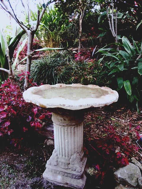 Wendy Whiteley's Secret Garden 7