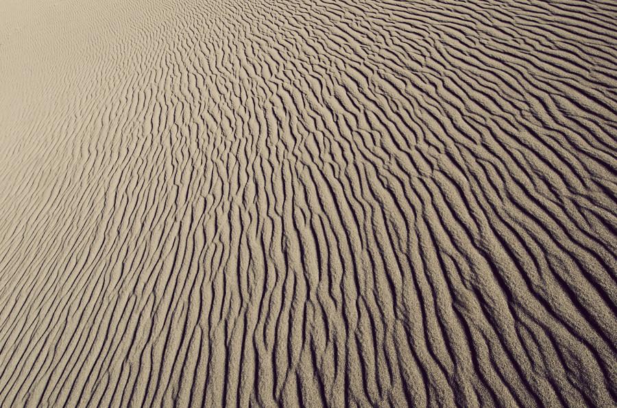 sand1 copy