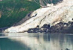 Hoonah Glacier (WarEagle8608) Tags: film nature landscape photo nationalpark kodak system glacier 24mm aps advanced hoonah apsfilm advancedphotosystem johnshopkinsinlet glacierbaynationalparkandpreserve cformat hoonahglacier