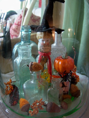 halloween under glass