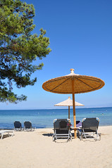 Bliss.... (Gabludlow) Tags: blue sea tree beach pinetree pine sand aegean greece parasol pachis thassos sunlounger thasos aegeansea  skalarachoniou pachisbeach
