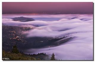 Fog Engulfing Mill Valley, San Francisco, CA
