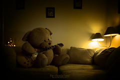 The Chordal Bear (Lee) Tags: bear light lamp wall fun toy moody teddy guitar room fluffy cuddly moods lespaul 450d leeislee leeworrall
