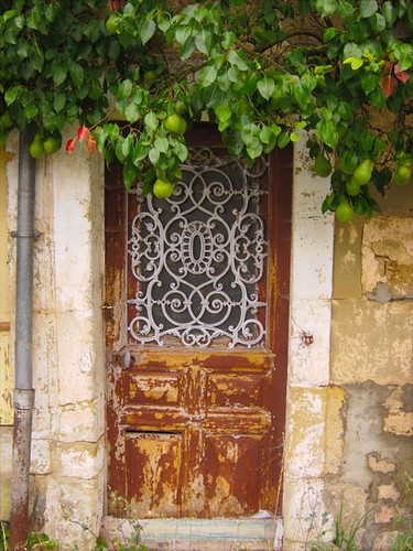 Old French Door Pears by Danalynn C