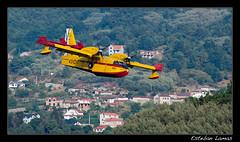 Canadair 215T, UD.13-17/431-17 (Esteban Lamas) Tags: grupo spotting 43 ourense aviacin contraincendios hidroavin canadaircl215t ud131743117 embalsedevelle