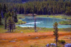 Klondike Highway - Landscape (blmiers2) Tags: travel blue trees orange lake green nature alaska forest landscape photography nikon rocks 2011 klondikehighway d3100 blm18 blmiers2