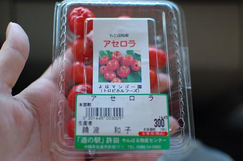 okinawa1109_081