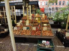 Amsterdam bulb market (WWW.CYCLETOURS.COM) Tags: flowers cycling tulips denhaag barge keukenhof readyforspring visitholland historicalholland
