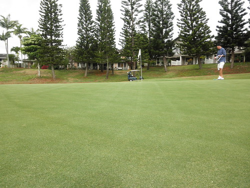 WAIKELE COUNTRY CLUB 052
