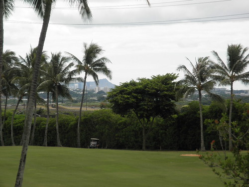 WAIKELE COUNTRY CLUB 098