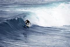 Surfer (Xavier Cloitre) Tags: ocean blue sea mer man water colors bondi azul photography mar photo nikon surf colours photographie pacific couleurs surfer sydney wave australia surfing colores bleu d200 fotografia tasman vague hombre pacifico bronte homme australie tamarama pacifique xaviercloitre