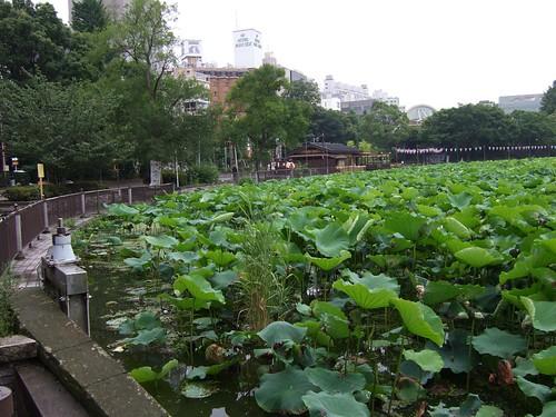 0384 - 10.07.2007 - Ueno