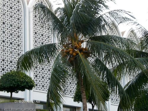 Kuala Lumpur_20110719_094 by Brin d'Acier
