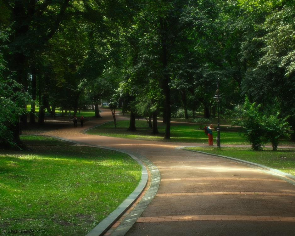 Там, на извилистых дорожках... © 2011 Alex Nedoviziy