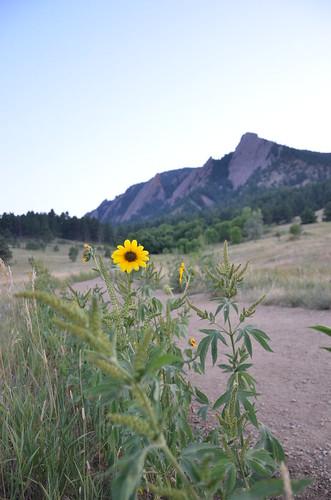 Colorado 2011 405