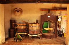 pronti per la spremitura (carla falconetti) Tags: tractor wine campagna tini antiquariato vino depoca semina trattore macchine vigneto forestale frutteto contadino giardinaggio cassone irrigazione forwarder agricolo macchinedepoca rimorchi orticoltura agricoltore coltura spremitura antiquefarm stoccaggio mietitrebbie rotopresse arboricoltura falciatrici spandiconcime antiquariatoagricolo fieniazione aratrici erpici mietitrici stoppiatori vendemmiatrici esboscatori segaacatena