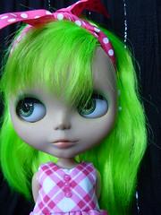 Munchkin my colorful girl!!