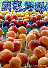 Stone Fruits at Florence Farmers' Market