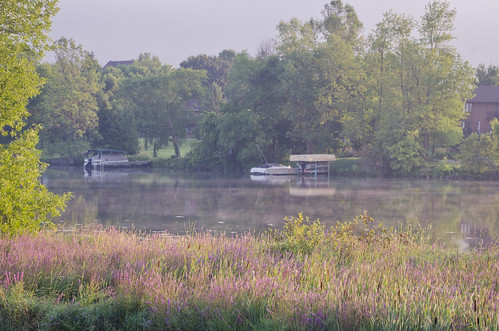 239:365 Misty morning on the Rideau