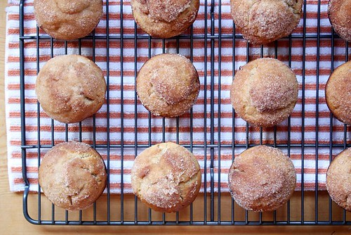 cider doughnut muffins.