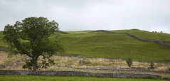 folds & walls (NorthernImager) Tags: view decorative yorkshire interest malham northyorksmoors ilobsterit