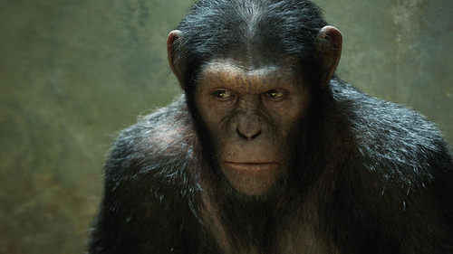 Caesar as played by Andy Serkis in Rise Of The Planet Of The Apes