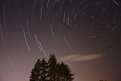 Startrails 3rd attempt (Tim Gavrilov) Tags: longexposure trees light night star trails evergreen streaks startrails