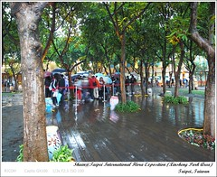 R0018229 (i。Shain) Tags: travel taipei 2011 台北花博 taipeiinternationalfloraexposition 新生園區 xinshengparkarea