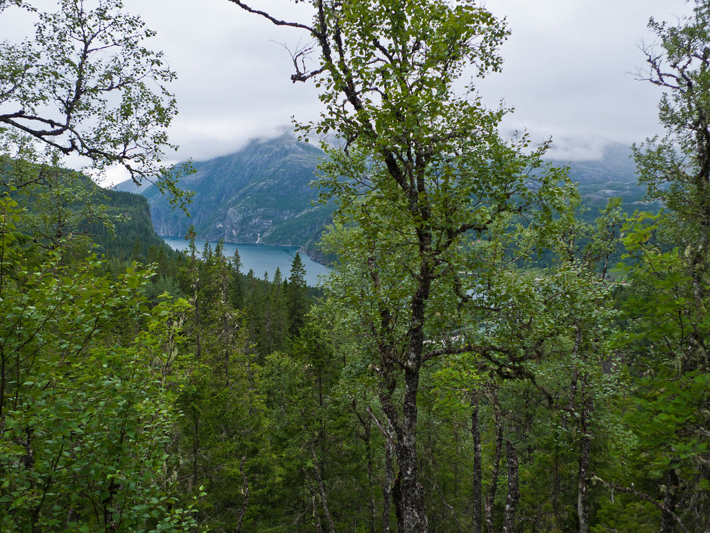 Fra Strompdal mot Børiøya
