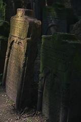 Cementerio Judo (Yolanda RAWirez) Tags: cemetery prague cementerio praha praga cementeriojudo canon550d yolandarawirez
