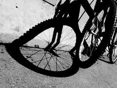 Wheel of Love (. Jianwei .) Tags: light shadow love bike wheel vancouver heart streetlife 365 a500 jianwei kemily mygearandme mygearandmepremium
