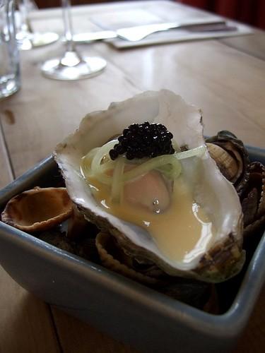 Sportsman oyster