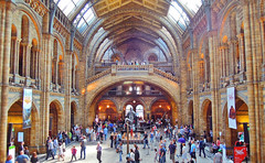 Natural History Museum (Muzammil (Moz)) Tags: uk london kensington naturalhistorymuseum moz muzammilhussain