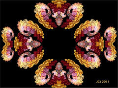 FRACTAL FAMILY FRACTA SCOPE (fantartsy JJ *2013 year of LOVE!*) Tags: abstract art animals photoshop circles bubbles fractal photoart kaleidoscopes originaldigitalart fractalsmademyway