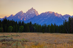 "Teton Cathedral Group at dusk (IronRodArt - Royce Bair (""Star Shooter"")) Tags: park trees sunset mist mountain mountains forest landscape hole dusk smoke peak grand jackson national layers wyoming grandtetons teton tetons range jacksonhole tetonrange grandtetonnationalpark cathedralgroup"