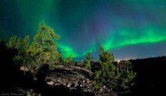 Aurora Boreal (savillent) Tags: aurora borealis northern lights northernlights sky space stars night dark black neon green alien et yellowknife nwt nt northwestterritories canada landscape nightscape astrophotography august 2011 nikon d300s 105mm fisheye lens new savillent saville photography francis anderson arctic north