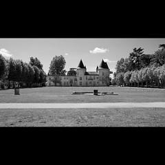 Thouars à Talence (Gironde)
