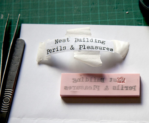 Nest Building Perils & Pleasures, Rubber Stamp