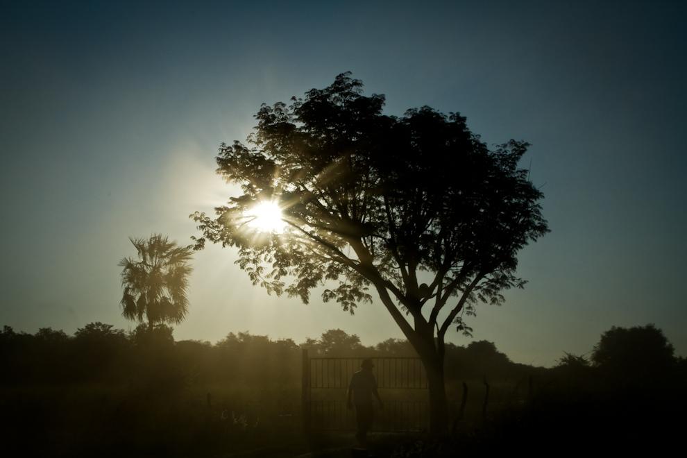 El sol se filtra entre los árboles y el polvo mientras un lugareño ingresa a su propiedad, camino a Zanjita. (Tetsu Espósito)