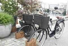 bicycles at rest (Johnh111003) Tags: cruise sea bike bicycle wheel norway river nikon raw ship basket transport norwegian transportation po inlet arcadia mv liner aalesund d80 johnh111003