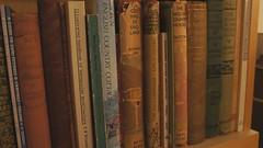 A bit of a bookshelf 11/09/08
