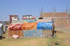 Nawabad 21-08-2100 039 (drs.sarajevo) Tags: afghanistan refugees idps returnees deportees heratcity ferqhaarea