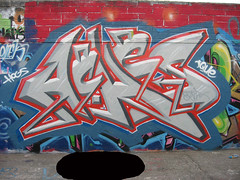 Graffiti (HeadAkes) Tags: graffiti aches hogs