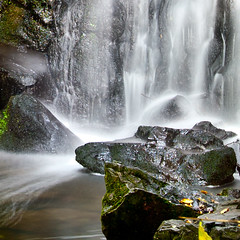 The other side . . . (Steve-h) Tags: park longexposure ireland dublin nature water waterfall moss rocks europa europe long exposure branches silk eu filter density slowexposure neutral silken ndfilter steveh manfrottotripod canonef1635mmf28liiusm 190cxpro4 canoneos5dmk2 doublyniceshot doubleniceshot tripleniceshot mygearandme mygearandmepremium mygearandmebronze mygearandmesilver mygearandmegold mygearandmeplatinum mygearandmediamond artistoftheyearlevel3 artistoftheyearlevel4 artistoftheyearlevel5 lightweightgear 391rc2manfrottohead faderndneutraldensityadjustablefilter artistoftheyearlevel7 artistoftheyearlevel6