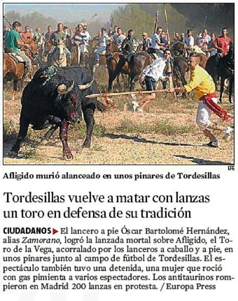 11i14 Toro alanceado en Tordesillas