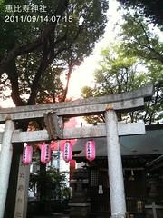 朝散歩(2011/9/14 7:05-7:25): 恵比寿神社