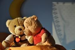 Tenerezza (MariLuVola) Tags: bear love teddy teddybear sweetness bubu peluches orsacchiotto tenerezza
