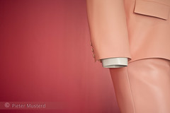 Big Suit (Pieter Musterd) Tags: pink holland art rose canon eos raw kunst nederland thenetherlands denhaag 5d gemeentemuseum ars thehague gem pak roze bigsuit saumon erwinwurm kostuum zalm sgravenhage fotovandeweek canoneos5dmarkii pietermusterd hofstijl 5dmarkii flikkah